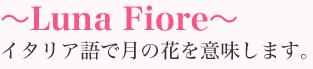 ~Luna Fiore~イタリア語で月の花を意味します。